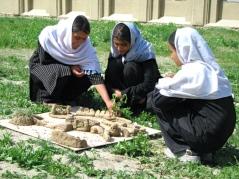 Babur's Garden activity